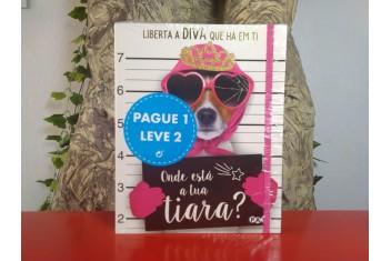 Onde Está a Tua Tiara? | Fala com Este Livro Pacote Leve 2 Pague 1