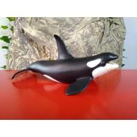 PAPO - Orca