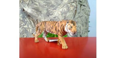 PAPO - Tigre
