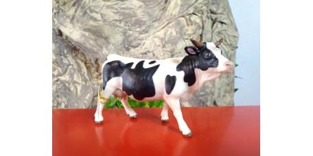 PAPO - Vaca