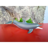 PAPO - Golfinho