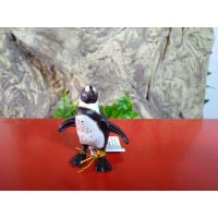 PAPO - Pinguim Africano