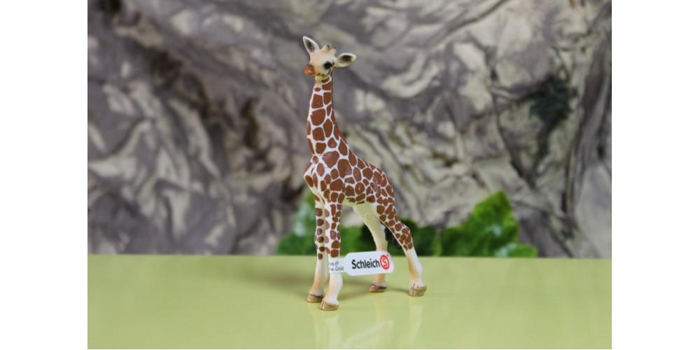 Schleich - Cria de Girafa