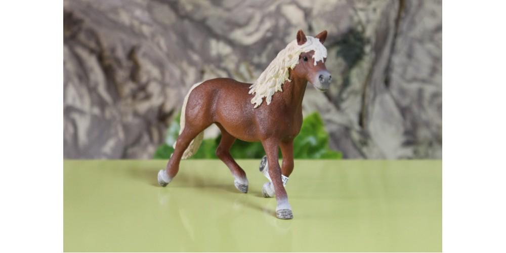 Schleich - Cavalo Garanhão Haflinger