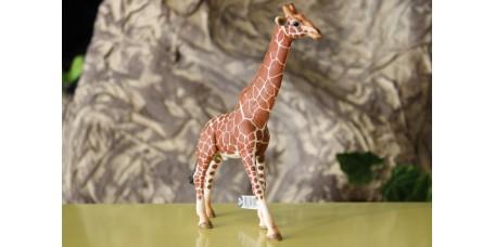 Schleich - Girafa Macho
