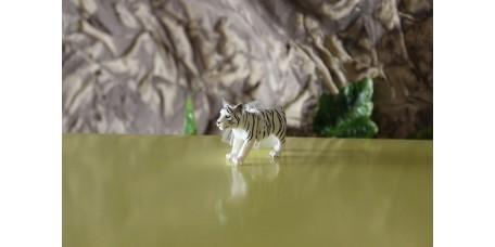 Cria de Tigre Branco