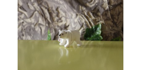 Cria de Urso Polar