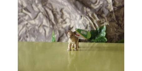 Cria de Leão Africano